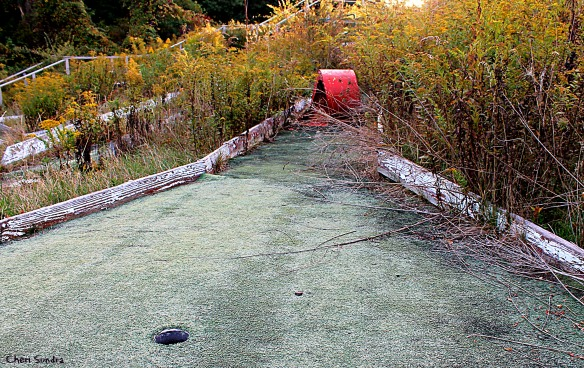 Tee Time No More –Abandoned Mini-Golf   Cheri Sundra